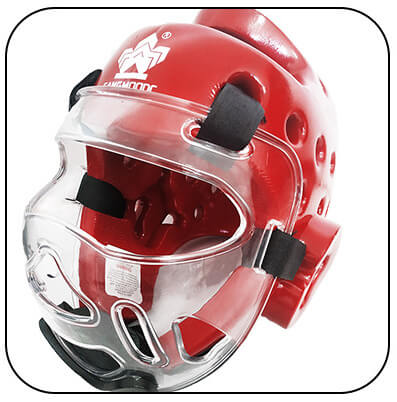 sparring headgear with face shield